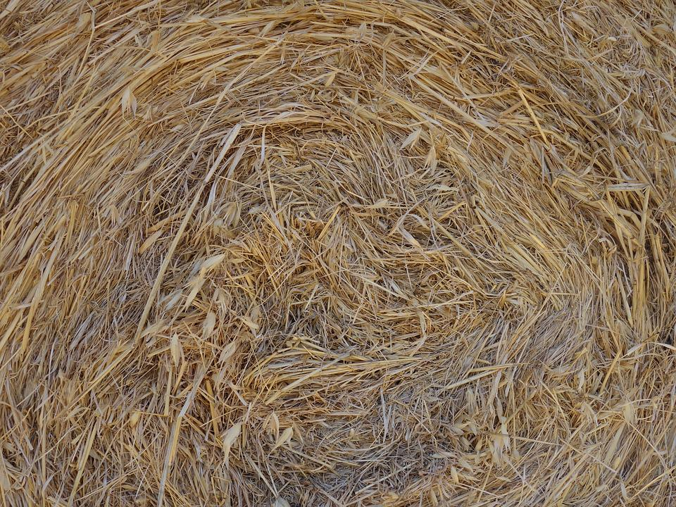Straw, Straw Bales, Dry, Rolled, Pattern
