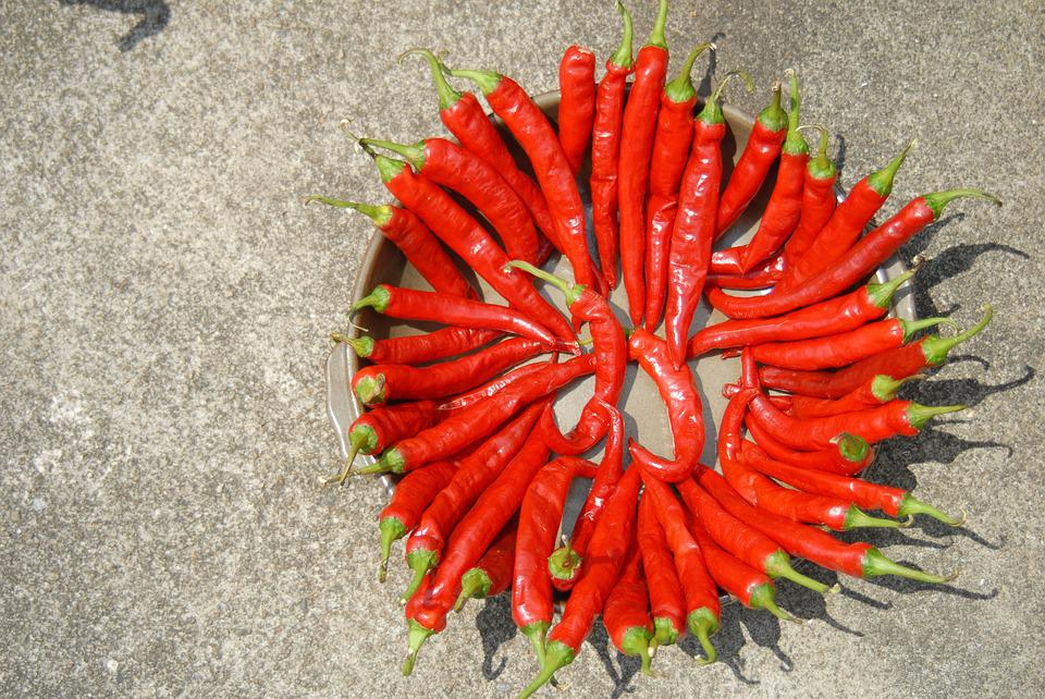 Pepper, Dry, Solar, Sunshine, Food, Spice, Red