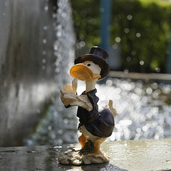 Duck, Fun, Funny