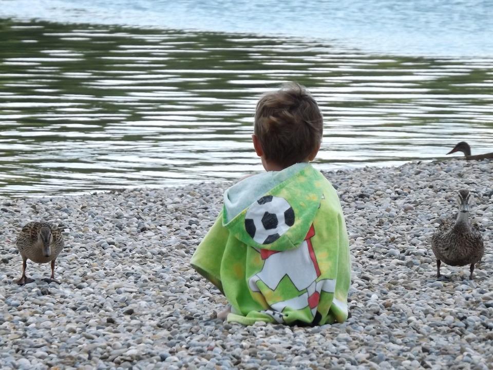 Child, Duck, Lake, Pebble, Rear View