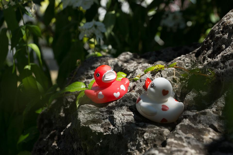 Ducks, Stone, Bath Duck, Love, Heart, Stones