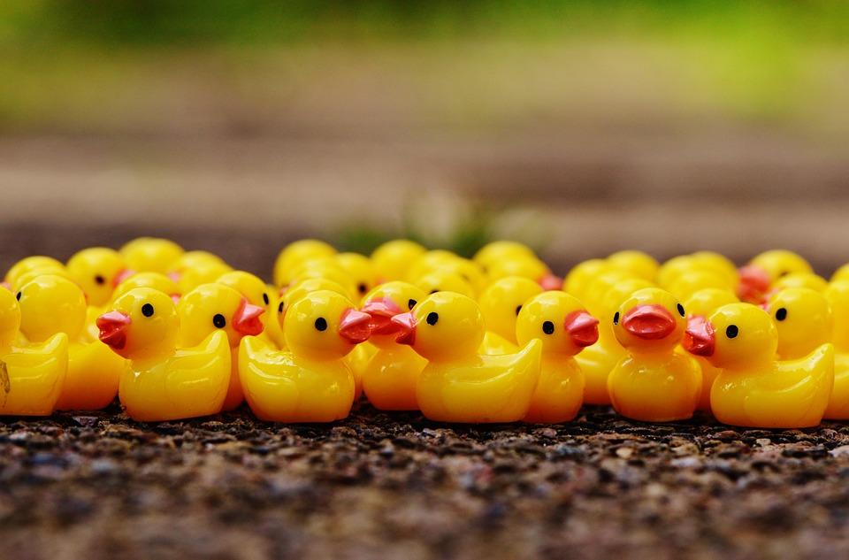 Ducks, Figures, Group, Cute, Sweet, Many
