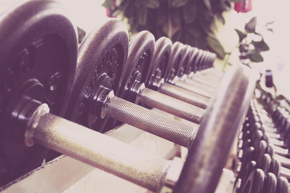 Fitness, Dumbbells, Training, Fitness Studio, Studio