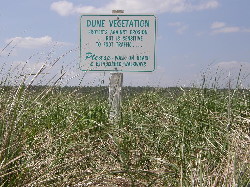 Sign, Coast, Beach, Summer, Dune