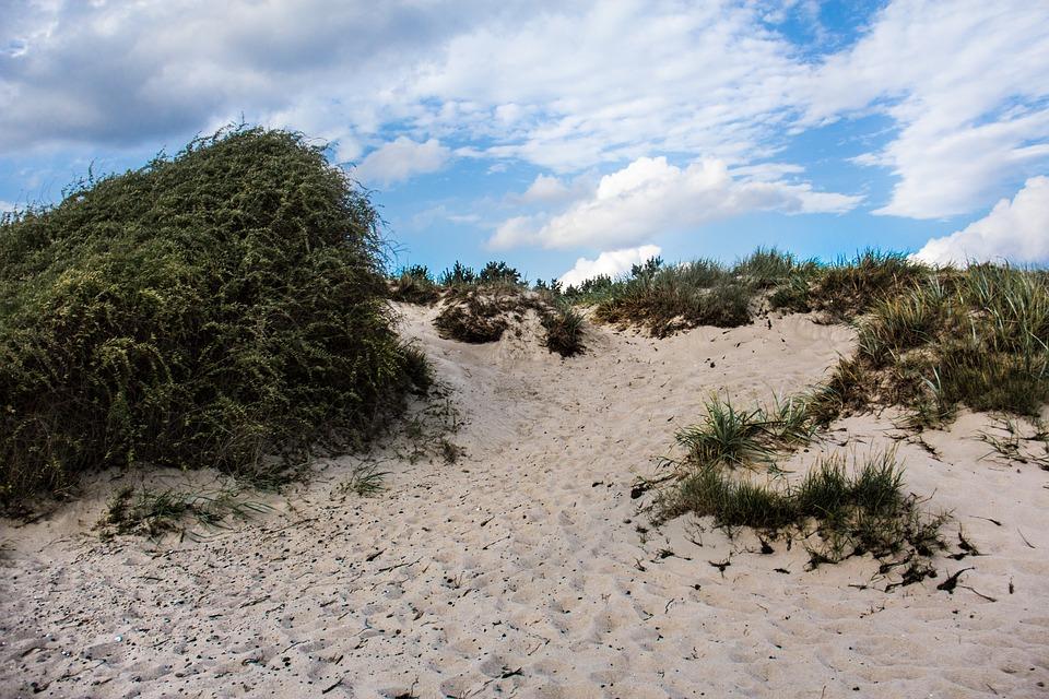 Dune, Baltic Sea, Rügen, Dune Grass, Nature, Sky
