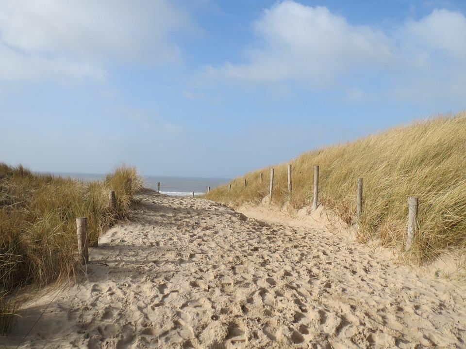 Sea, Beach, Dune, Marram Grass, Dunes, Sun, Nature