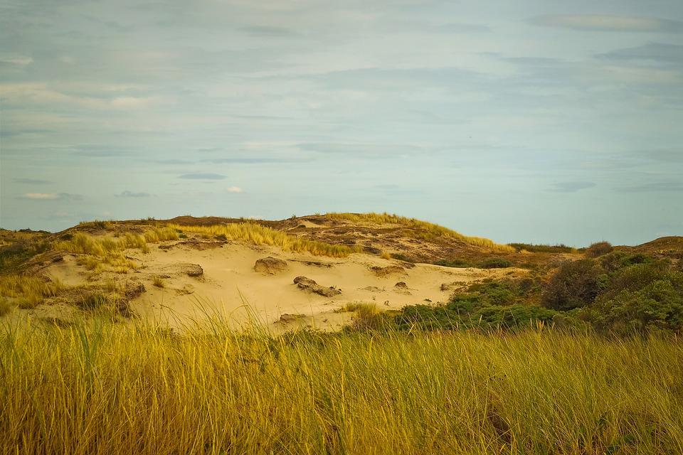 Beach, Dune, Sand, Sea, North Sea, Vacations, Nature