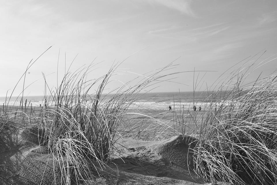 Beach, Dune, Norderney, Coast, North Sea
