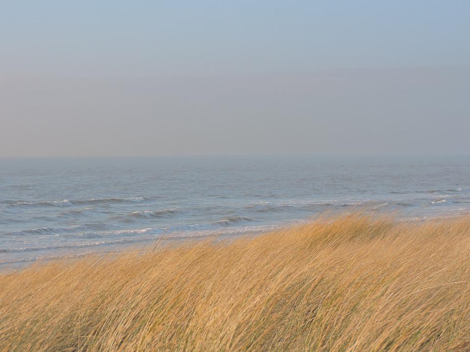Sea, Marram Grass, Dune, Beach