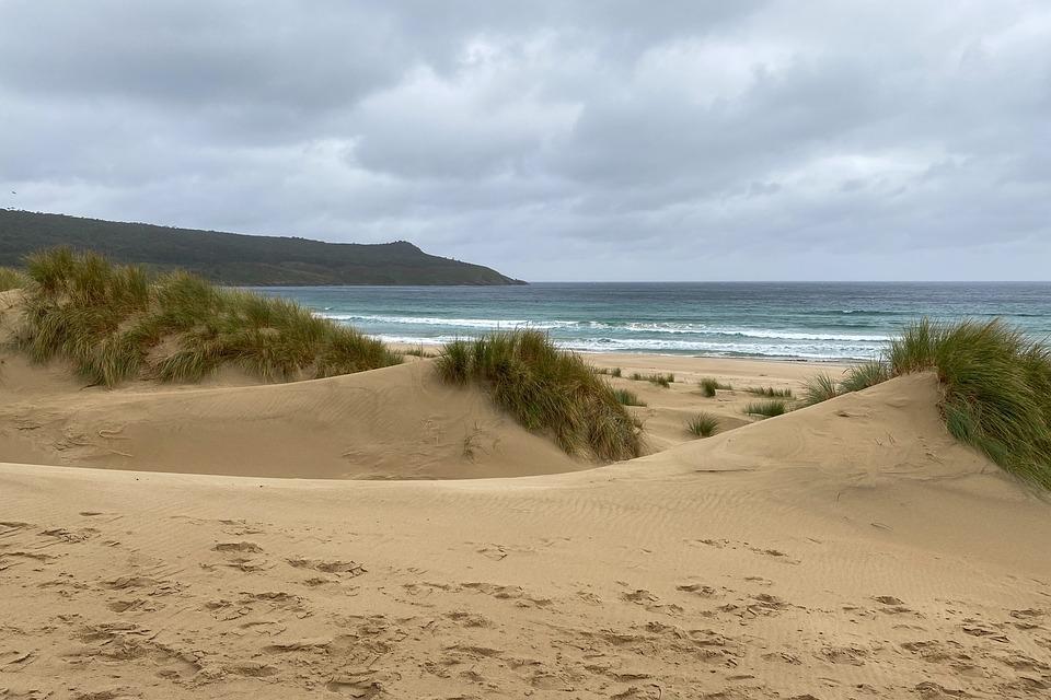 Sand Dunes, Dunes, Sand, Beach, Ocean, Sea, Seascape