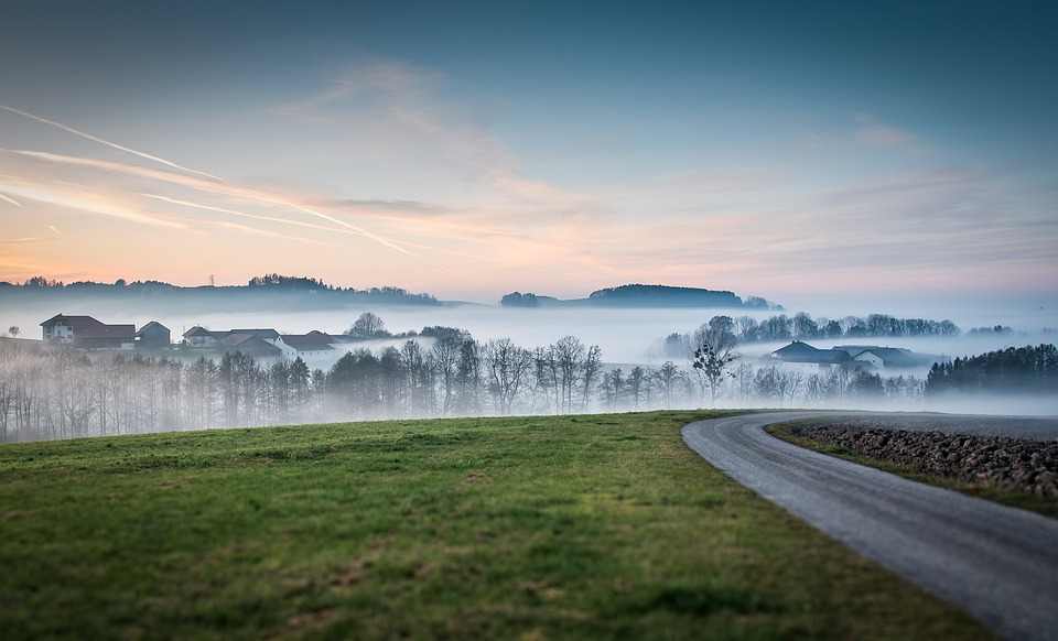 Road, Meadow, Fog, Sunset, Dusk, Field, Hill, Trees