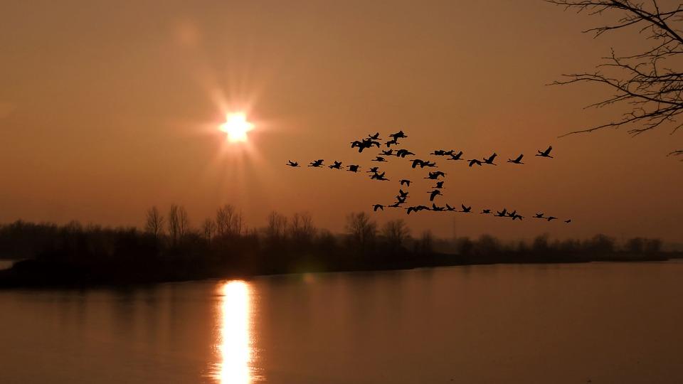 Sunset, Reflection, Lake, Waters, Sky, Evening, Dusk