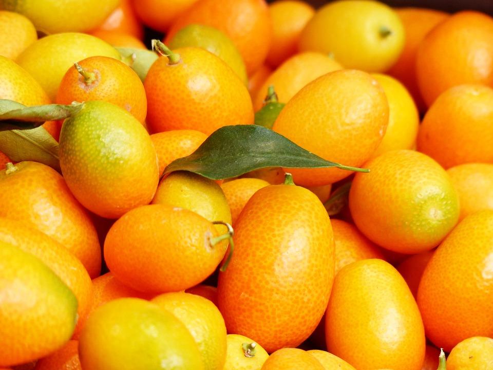 Kumquats, Fruits, Fruit, Fortunella, Dwarf Rind, Orange