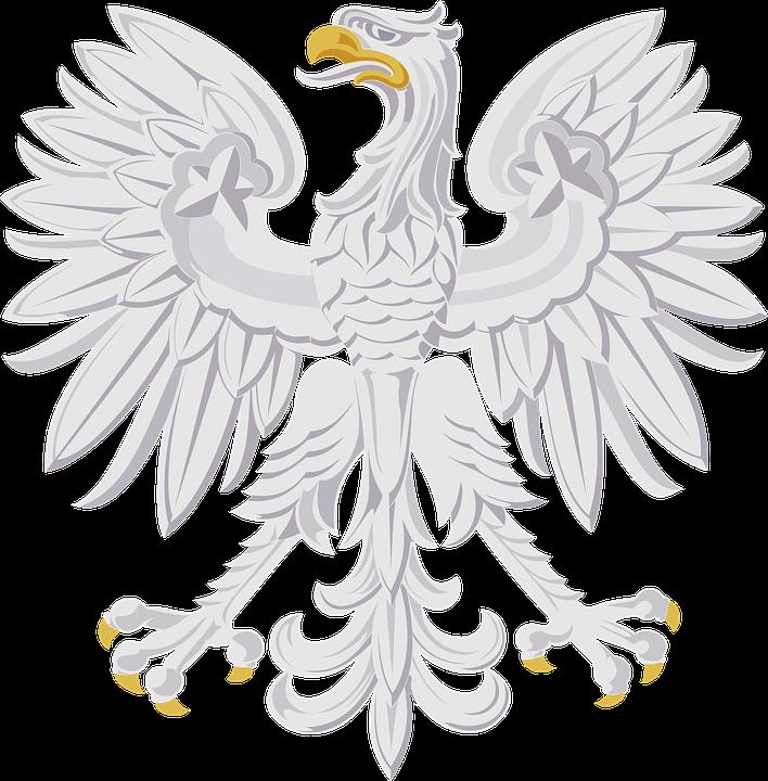 Animal, Bird, Eagle, Stylised