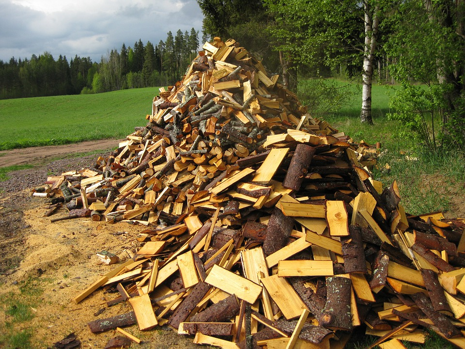 Early Summer, Firewood, Woodpile, Landscape, Field