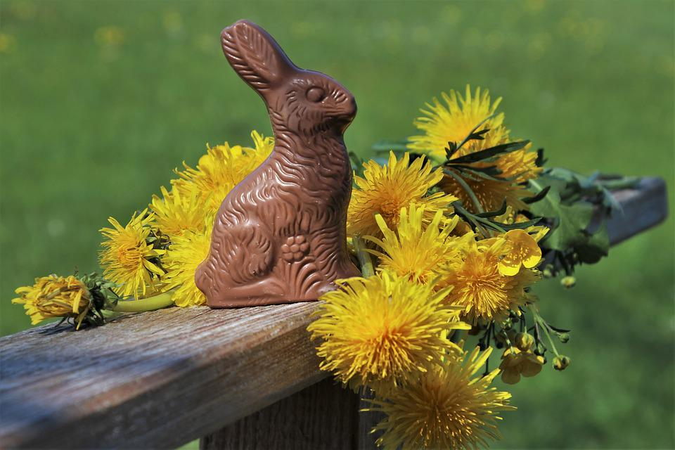 Easter, Rabbit, Dandelion, Ears, Calories, To, One