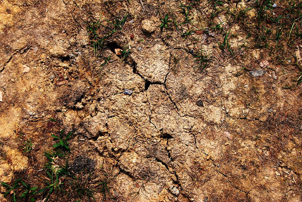 Cracked, Earth, Ground, Brown, Parched, Cracks, C, Arid