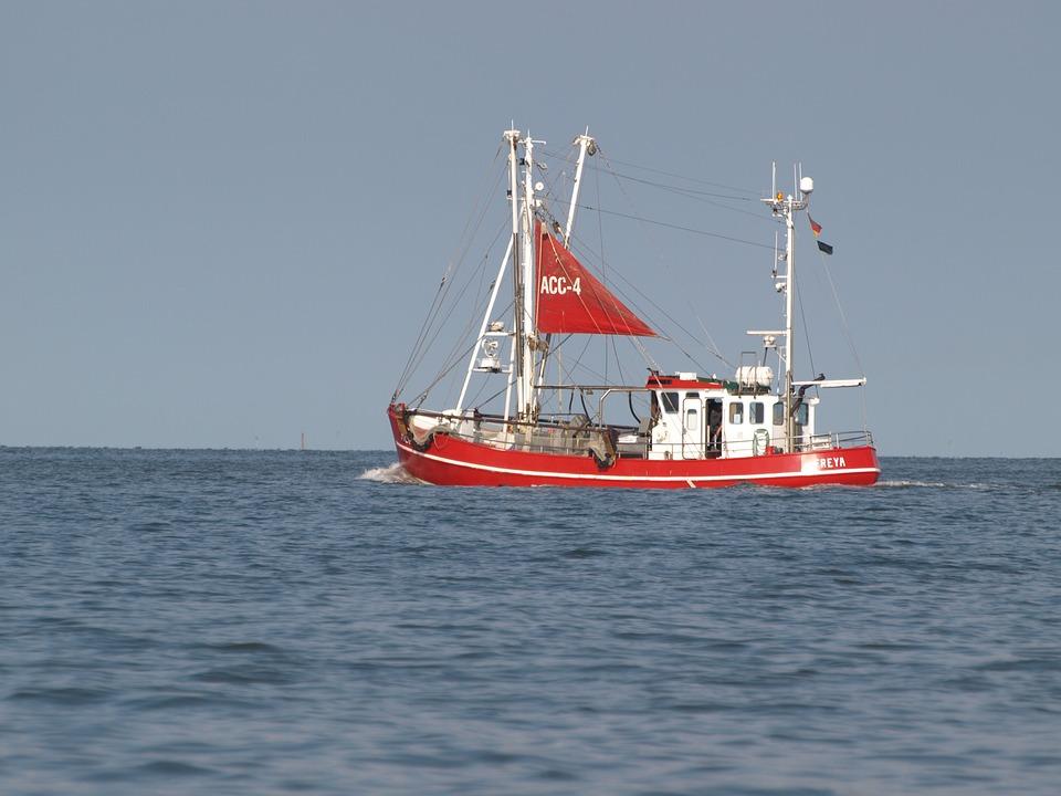 Fishing Vessel, Shrimp, North Sea, Cutter, East Frisia