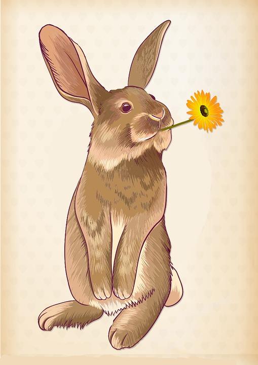 Hare, Flower, Easter, Cute, Spring, Easter Bunny
