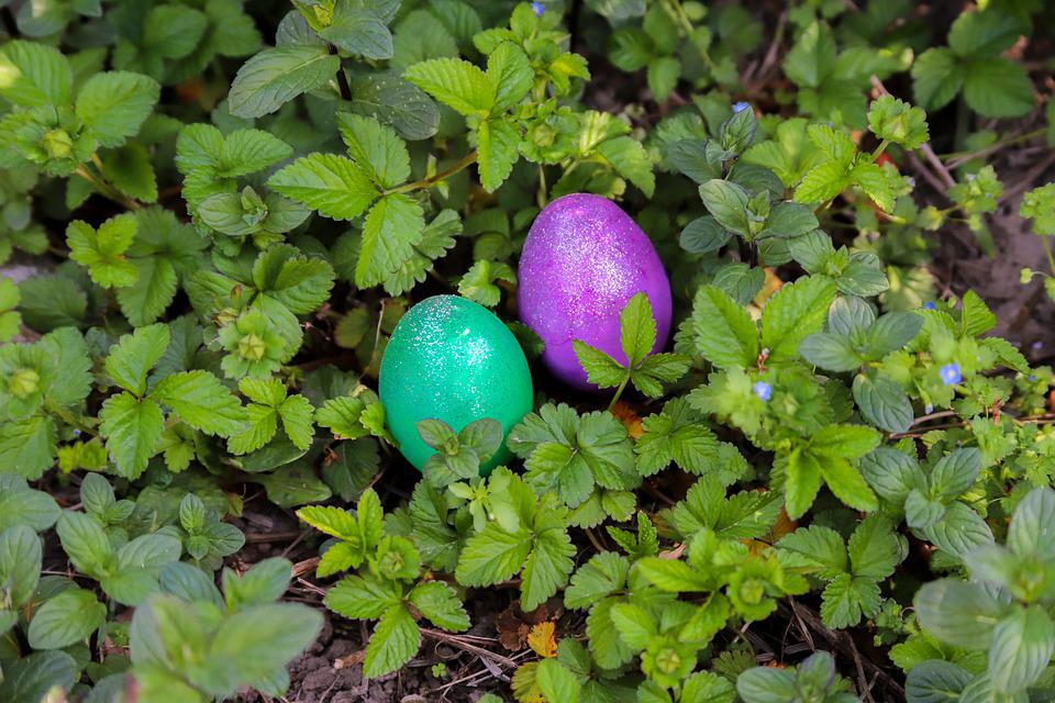 Egg, Easter, Happy, Color, Colored, Spring