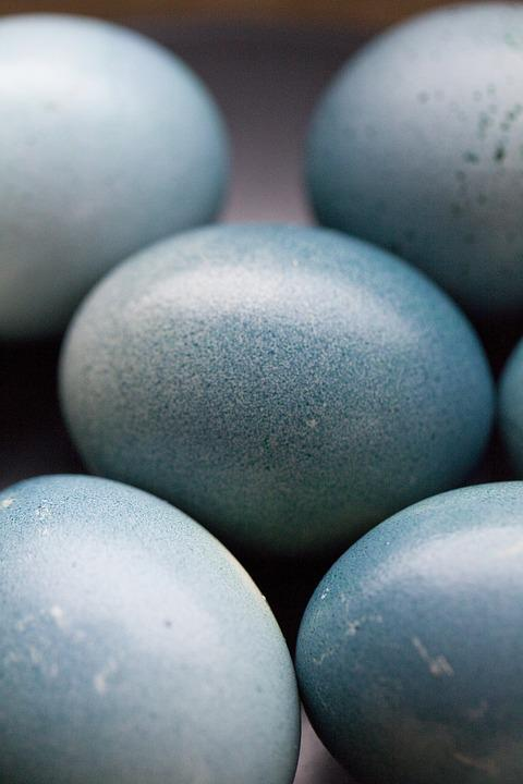 Eggs, Blue, Spring, Easter, Egg, Easter Eggs, Delicious