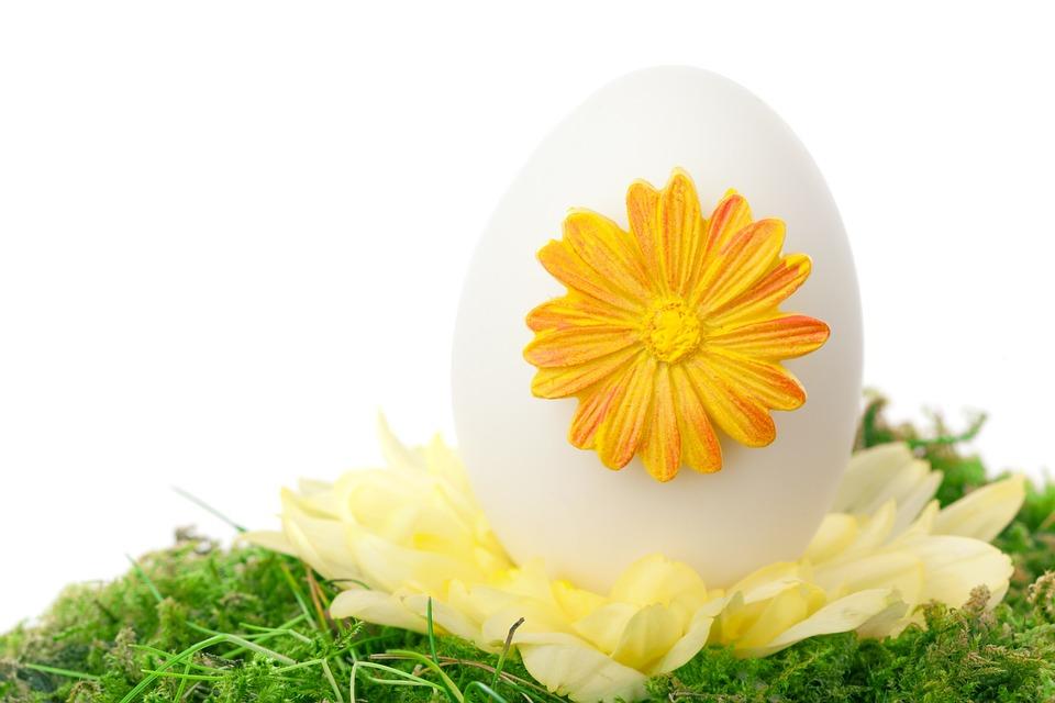 Celebration, Color, Decoration, Decorative, Easter, Egg