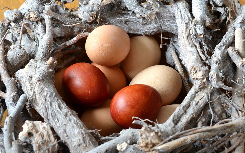Egg, Easter Eggs, Eat, Nest, Easter, Food, Color