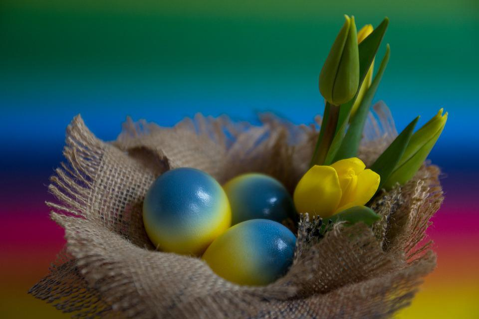 Easter, Easter Eggs, Egg, Colored Eggs, Yellow, Blue