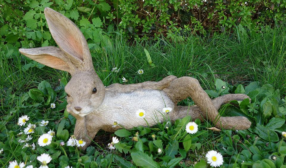 Easter Bunny, Easter, Green, Meadow, Spring, Hare