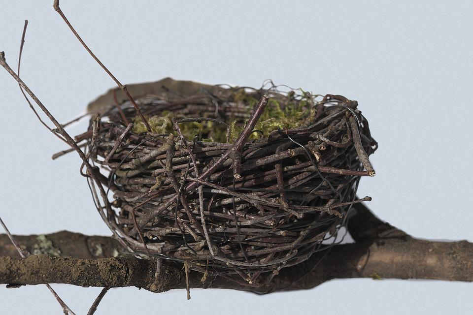 Bird's Nest, Nest, Easter Nest, Easter Decoration