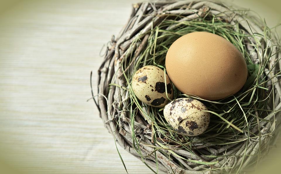 Egg, Nest, Easter, Easter Nest, Easter Decoration