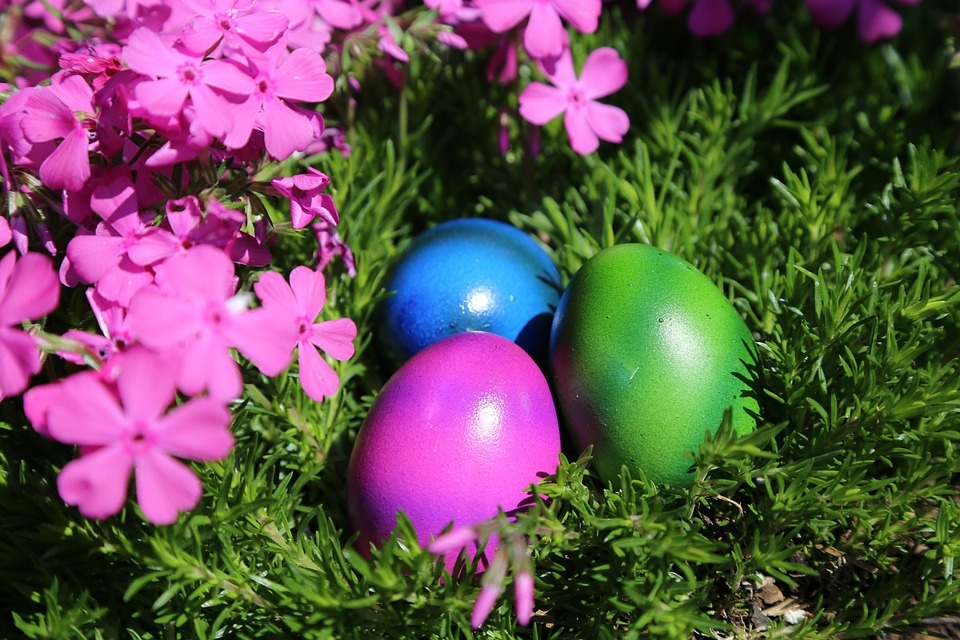 Easter, Easter Nest, Egg, Colorful, Colored