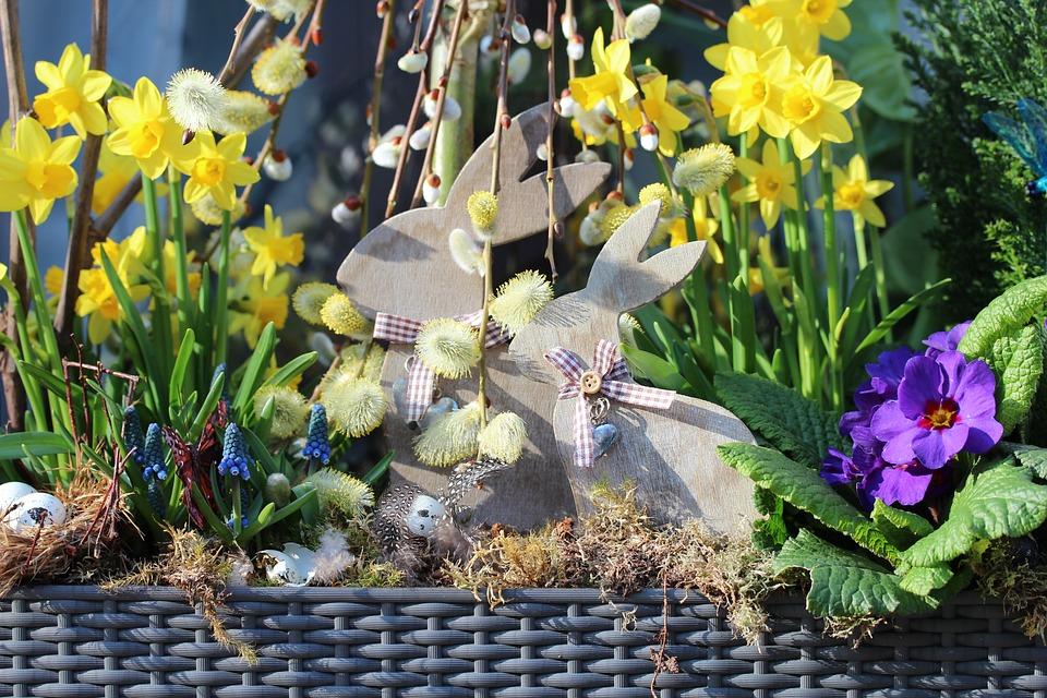 Easter, Spring, Flower, Yellow, Rabbit, Flower Box