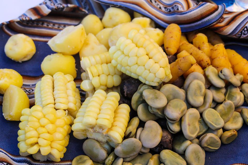 Corn On The Cob, Lunch, Beans, Eat