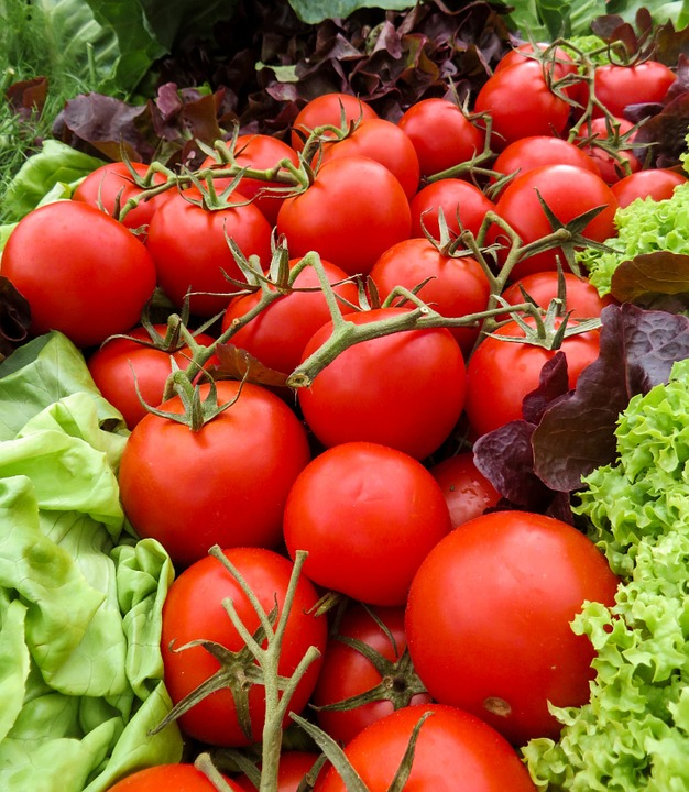 Tomatoes, Vegetables, Food, Garden, Eat, Red, Tomato