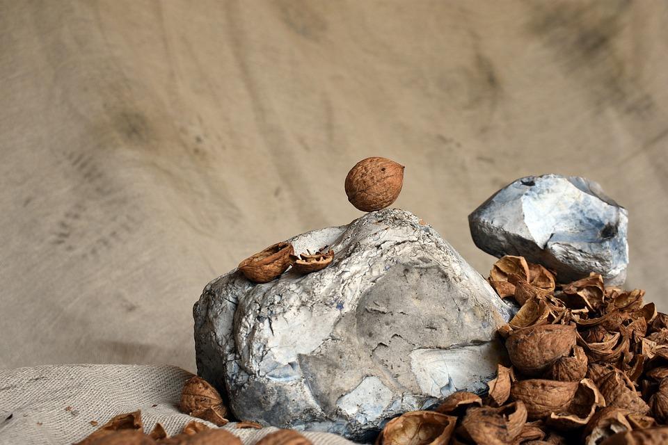 Walnut, Nuts, Food, Delicious, Fruit, Healthy, Eat