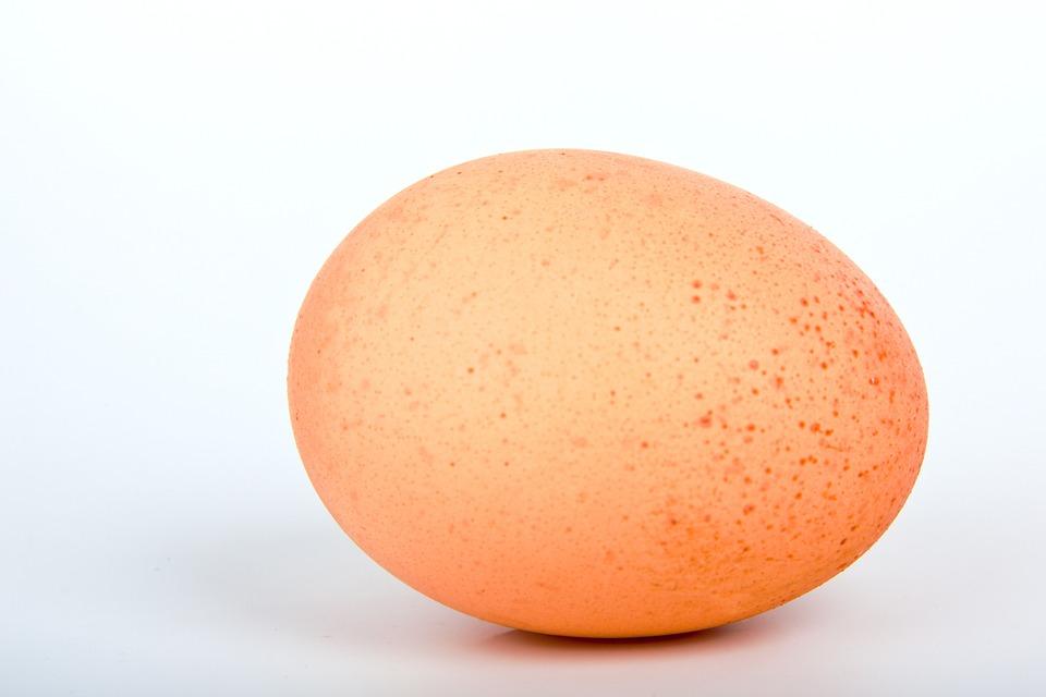 Egg, White, Ecru, Food, Fresh, Isolated, One, Organic