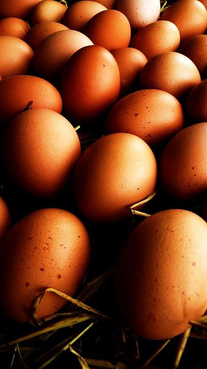 Eggs, Straw, Egg, White, Ecru, Food, Fresh, Organic