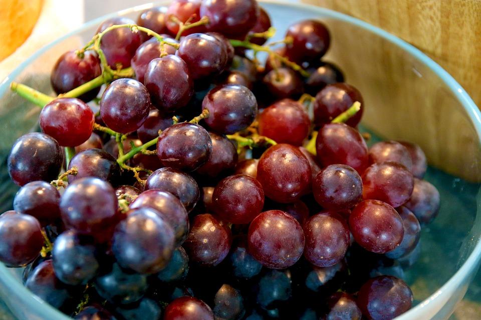 Grapes, Fruit, Eat, Food, Table Grapes, Blue, Edible