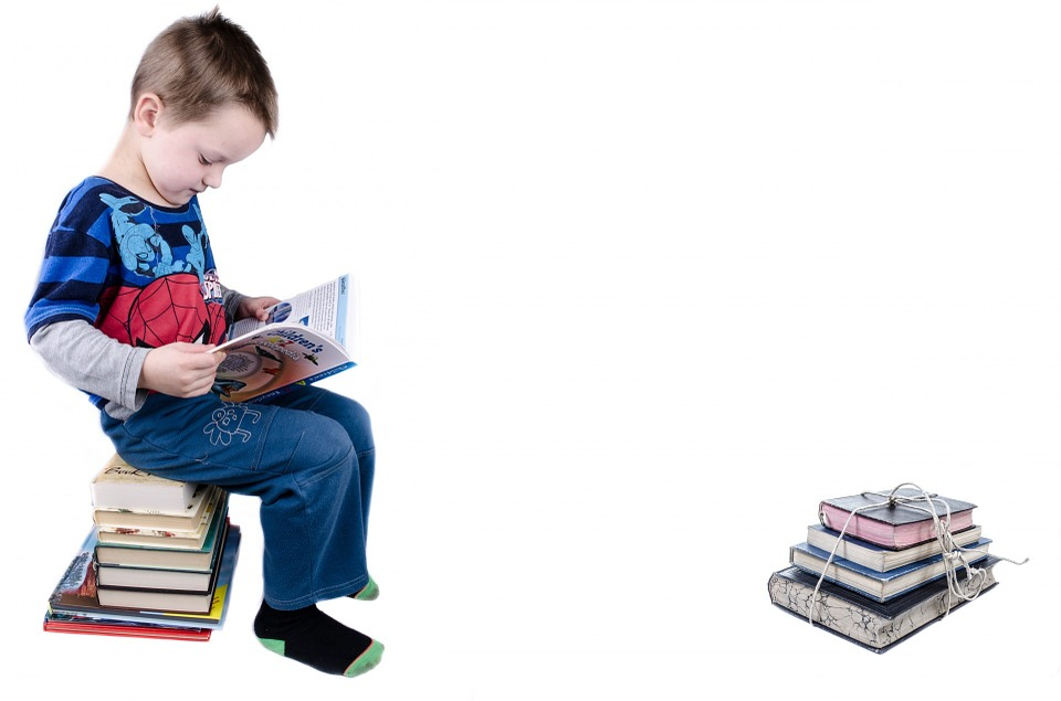 Child, Book, Boy, Studying, Isolated, Educational