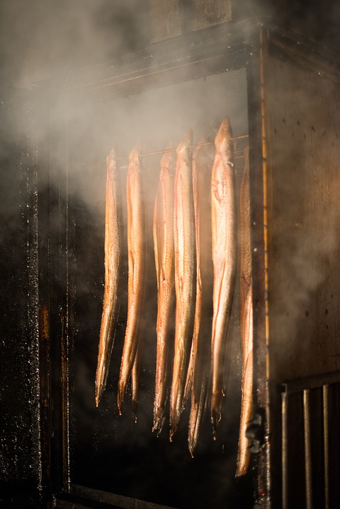Eel, Fish, Smoking, Smoke, Food, Seafood, Meal, Cuisine
