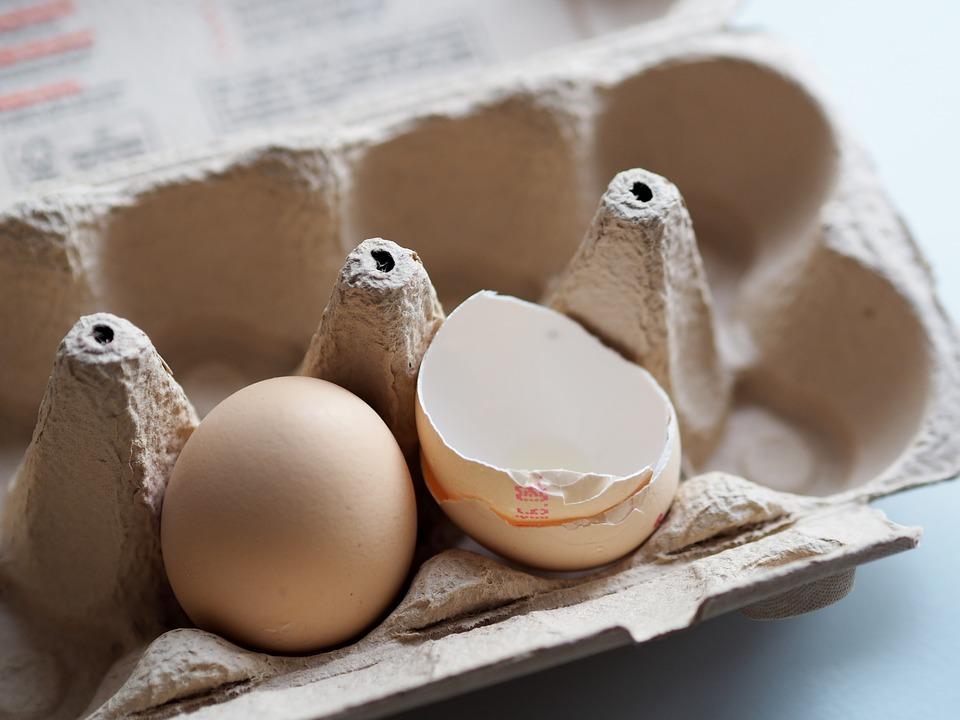 Egg, Eggshell, Pack, Cardboard, Bake, Prepare, Bio