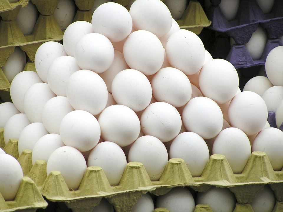 Egg, Egg Carton, Chicken Eggs, Egg Packaging, Stack