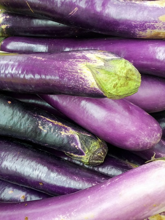Egg Plant, Eggplant, Food, Plant, Fresh, Natural