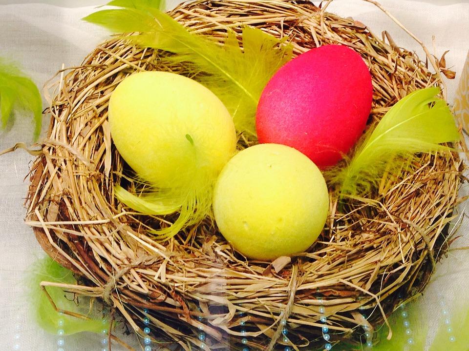 Egg, Easter, Nest, Spring