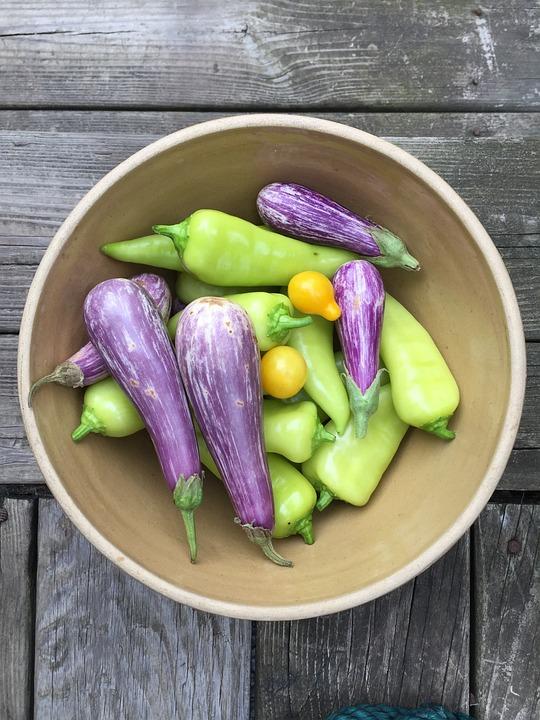 Vegetables, Bowl, Eggplant, Peppers, Wood, Garden