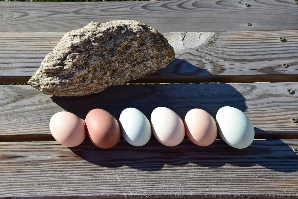 Egg, Food, Nutrition, Chicken Eggs, Easter, Eggshell