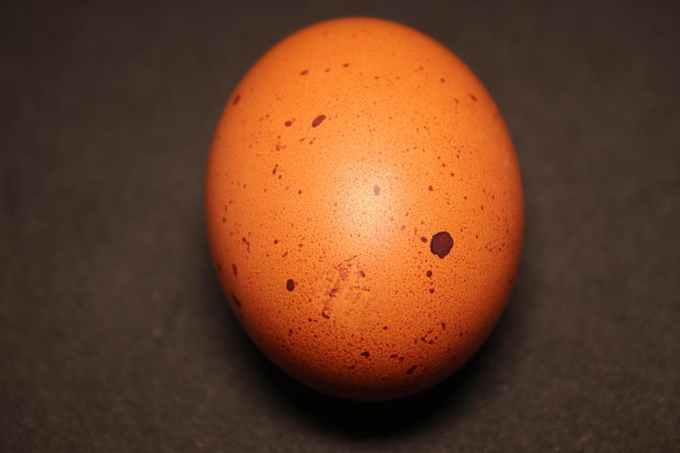 Egg, Brown, Food, Eggshell, Hen's Egg, Nutrition, Eat