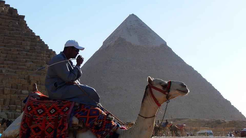Pyramid, Camel, Egypt, Cairo, History, Egyptian, Giza