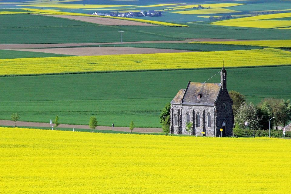 Oilseed Rape, Yellow, Landscape, Church, Eifel